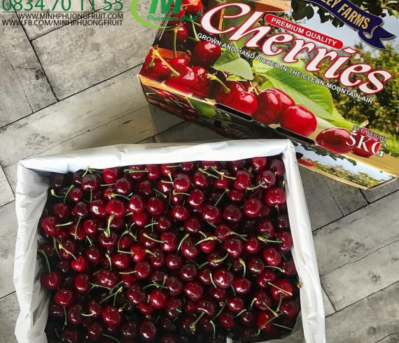 Cherry Úc Hộp 1kg - Wandin Valley Farm