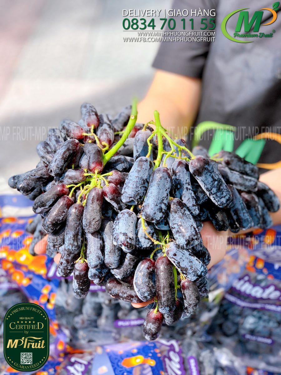 Nho Ngón Tay Sweet Sapphire iLLuminate The Sky Mỹ tại MP Fruits
