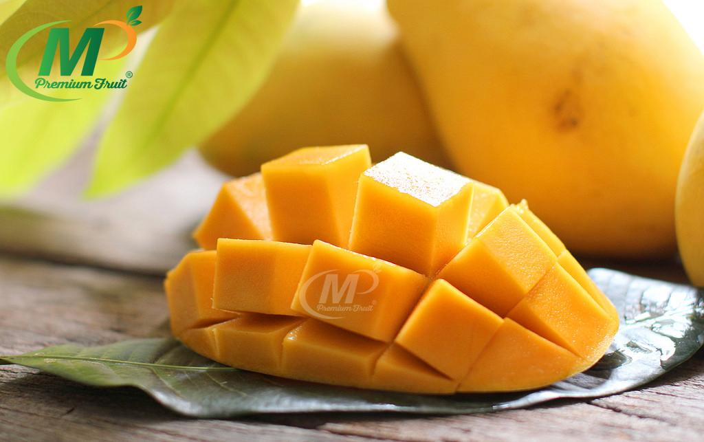 Xoài Cát Chu Vàng Chú Chín tại MP Fruits