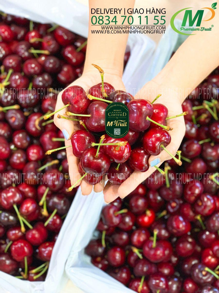Cherry Đỏ Stemilt Mỹ tại MP Fruits