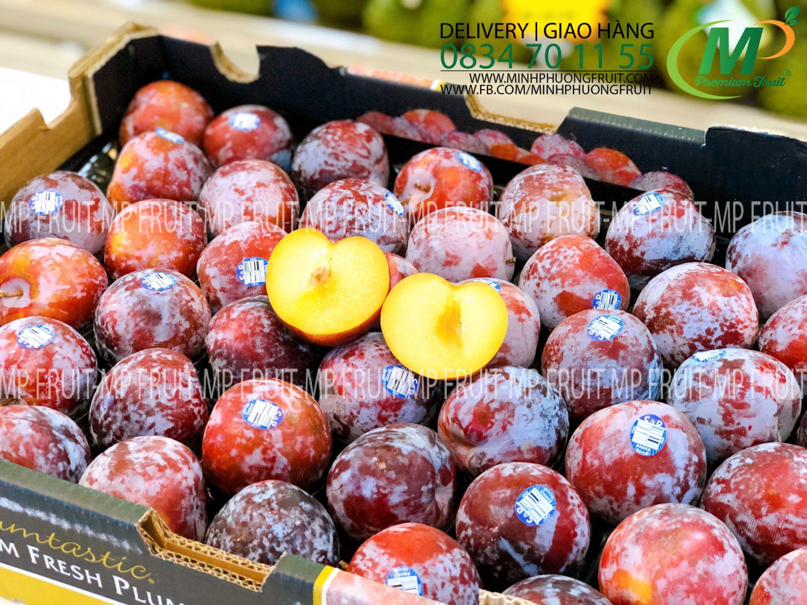 Mận Đỏ Chile tại MP Fruit