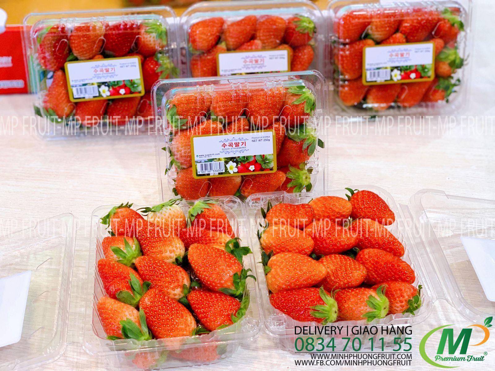Dâu Tây Hàn Quốc - MP Fruit