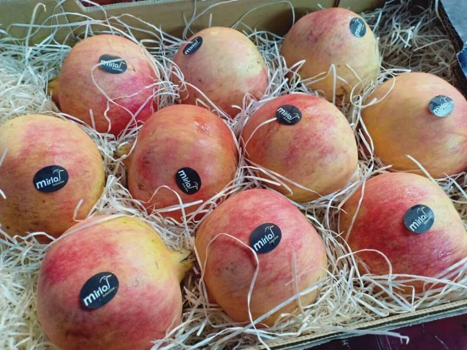 Lựu Hồng Tây Ban Nha - MP Fruit