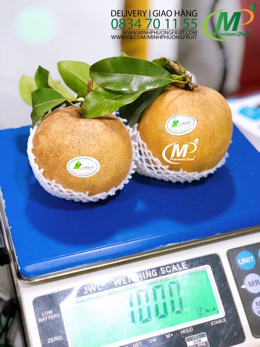 Hồng Xiêm Mexico - Sapoche Mexico tại MP Fruits