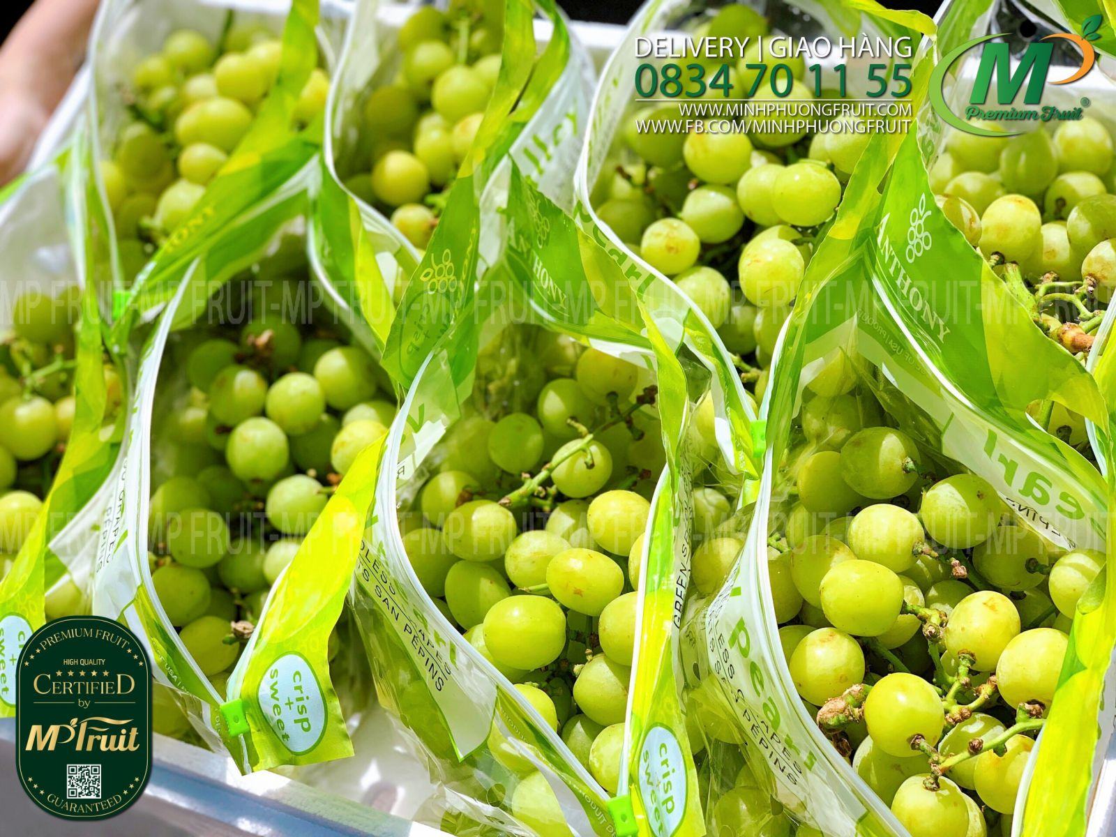 Nho Xanh Valley Pearl Anthony Mỹ tại MP Fruits