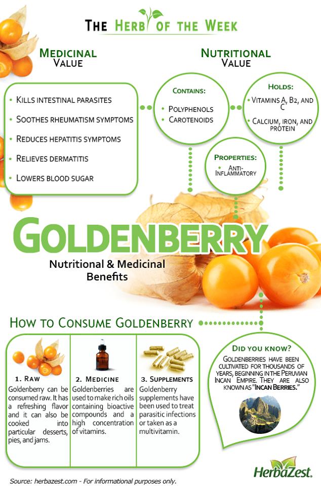 Bảng chú thích các chất dinh dưỡng và lợi ích của Trái Tầm Bóp Nam Mỹ - MP Fruits