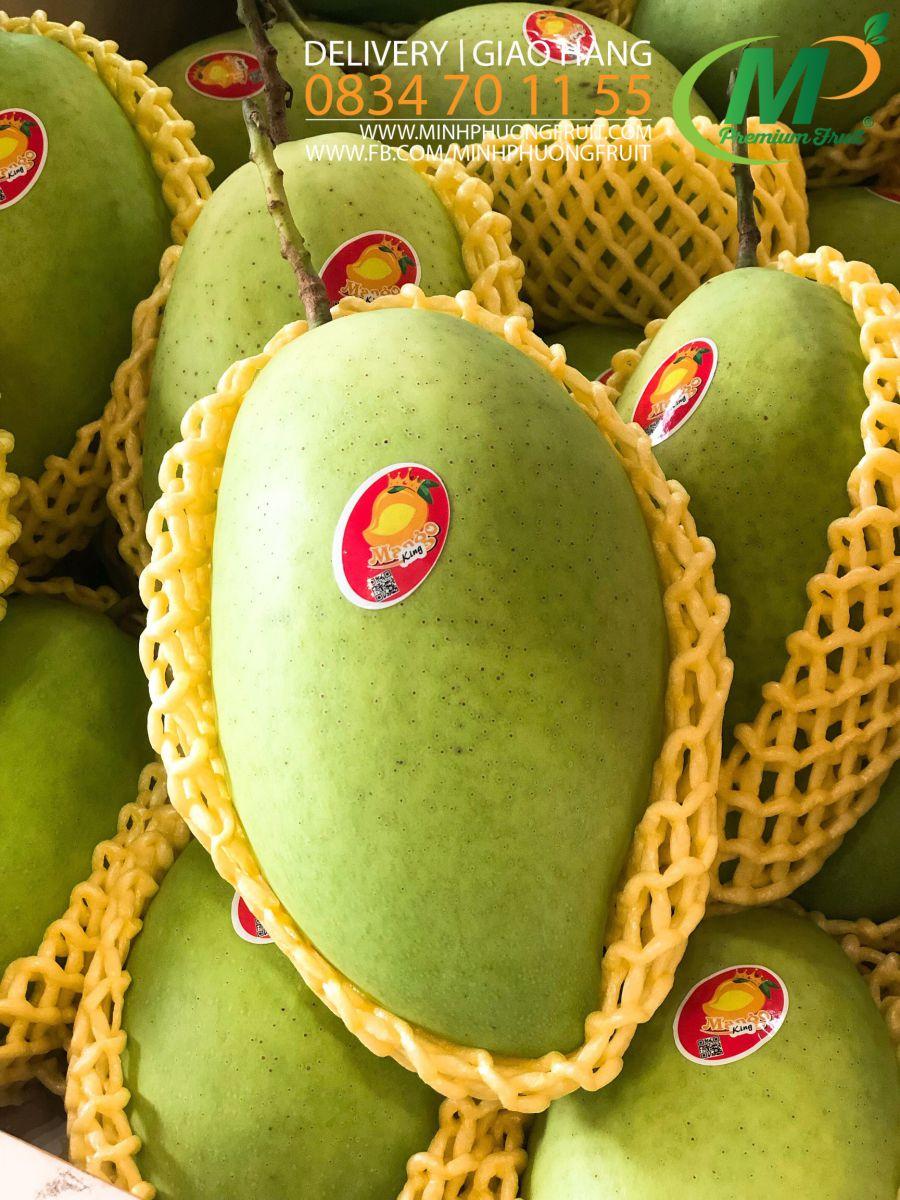 Xoài Cát Hòa Lộc - Mango King - MP Fruit