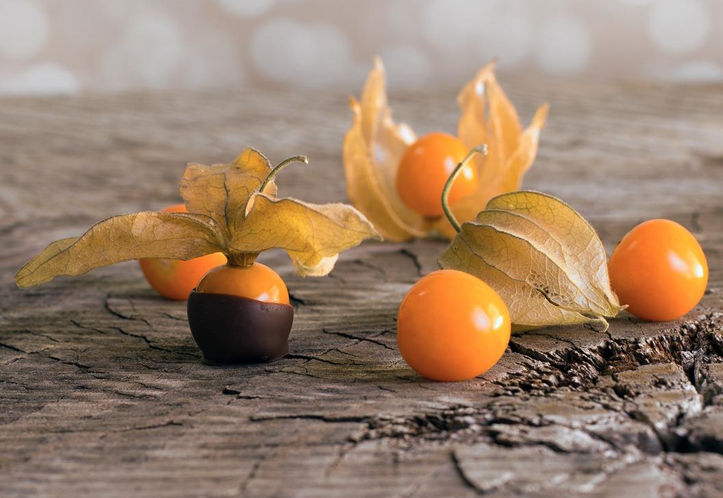 Món Tầm Bóp nhúng Chocolate - MP Fruits