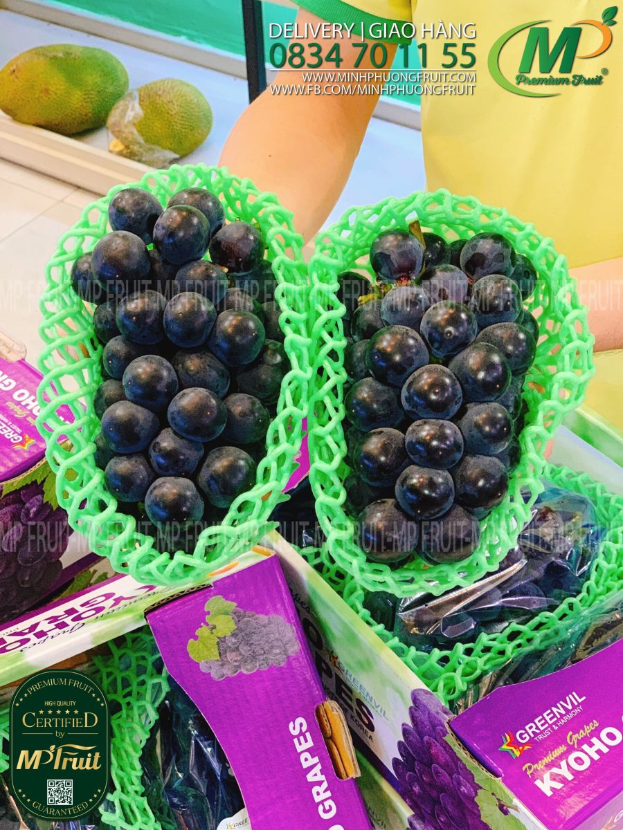 Nho Rượu Kyoho Hàn Quốc tại MP Fruits