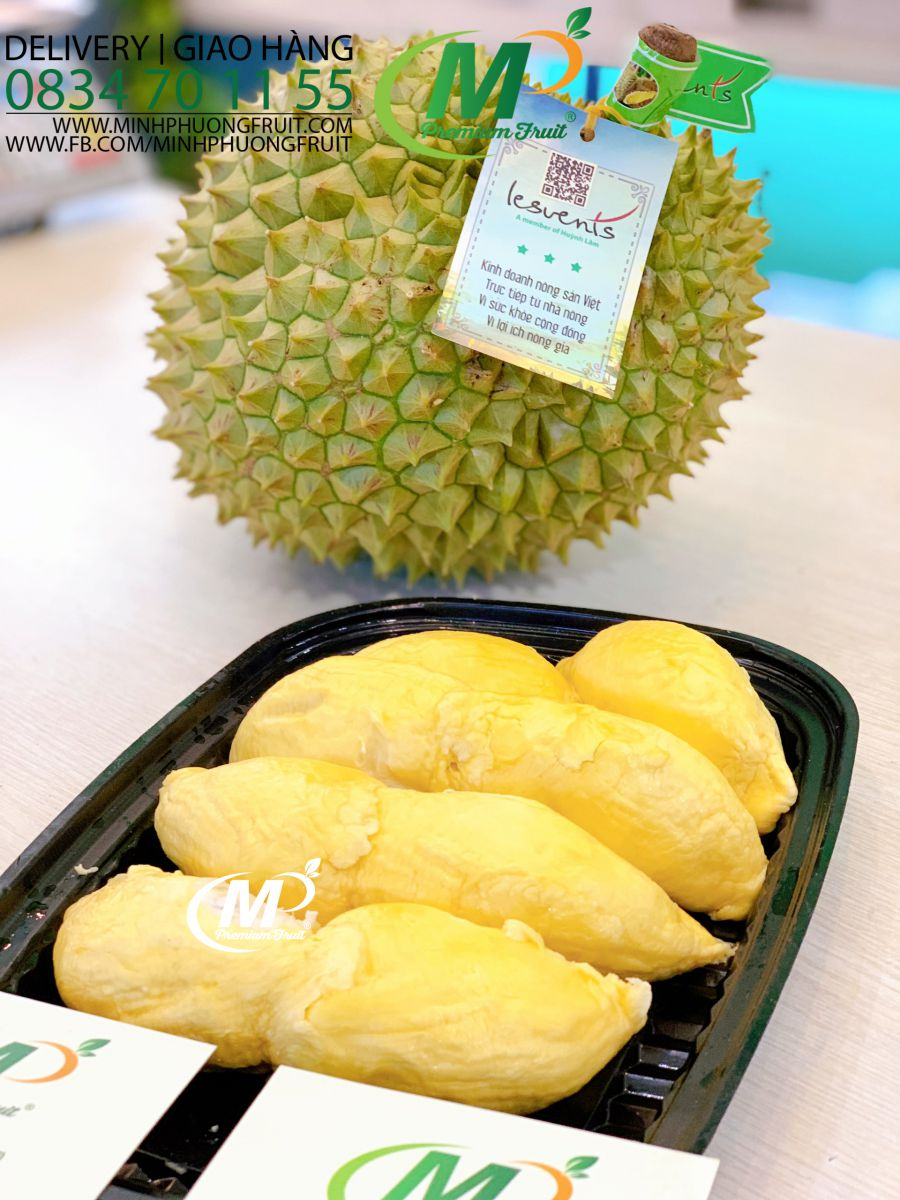 Sầu Riêng Ri6 Huỳnh Lâm tại MP Fruit