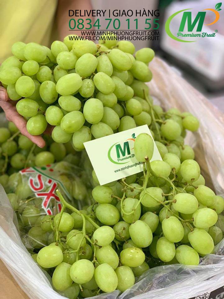 Nho Xanh Sweet Globe Nam Phi tại MP Fruit