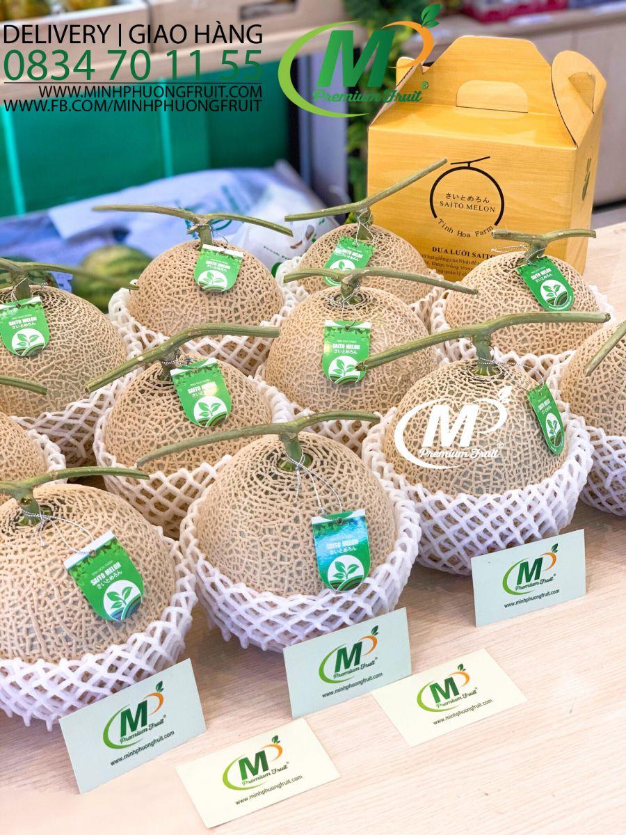 Dưa Lưới Nhật Saito Green Melon - MP Fruit