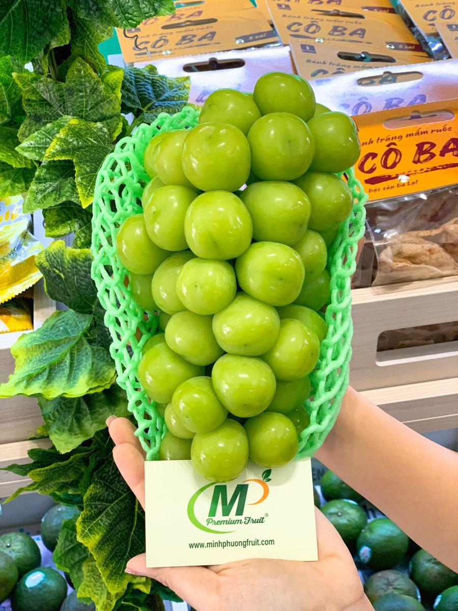Nho mẩu đơn Shine Muscat Hàn Quốc - MP Fruit