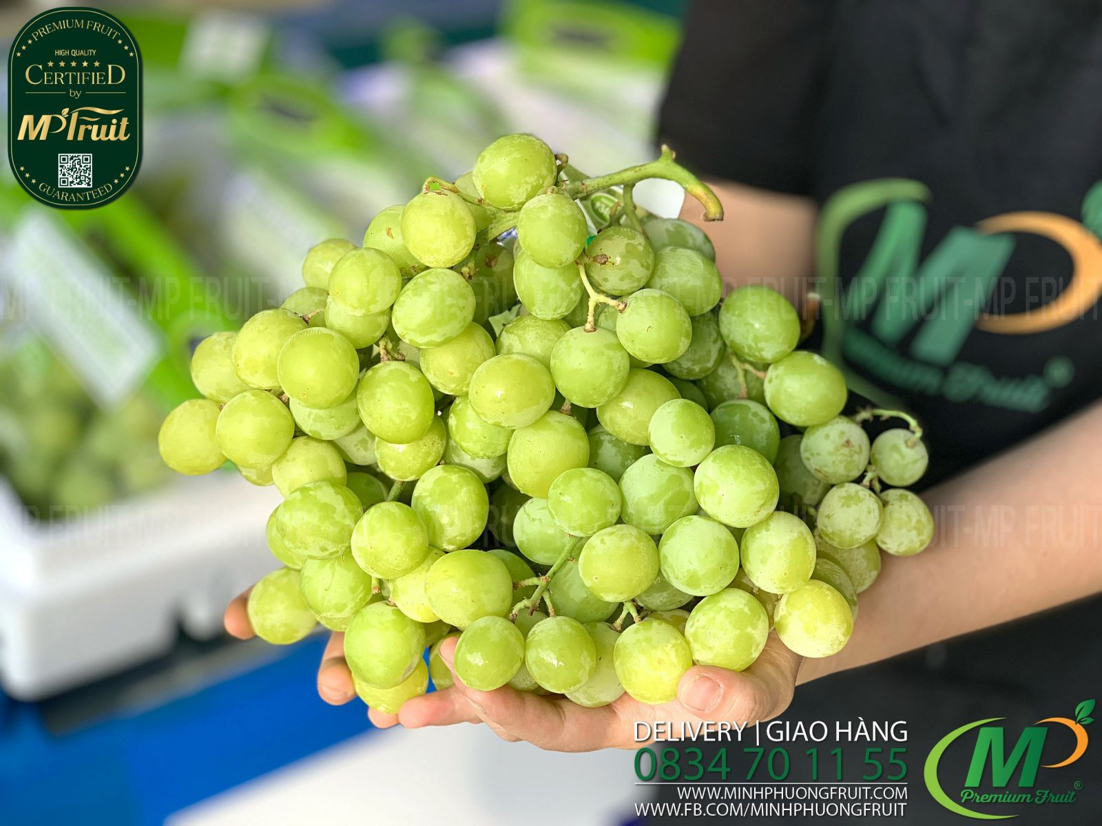 Nho Xanh Autumn Crisp Flavor Grown Mỹ tại MP Fruits