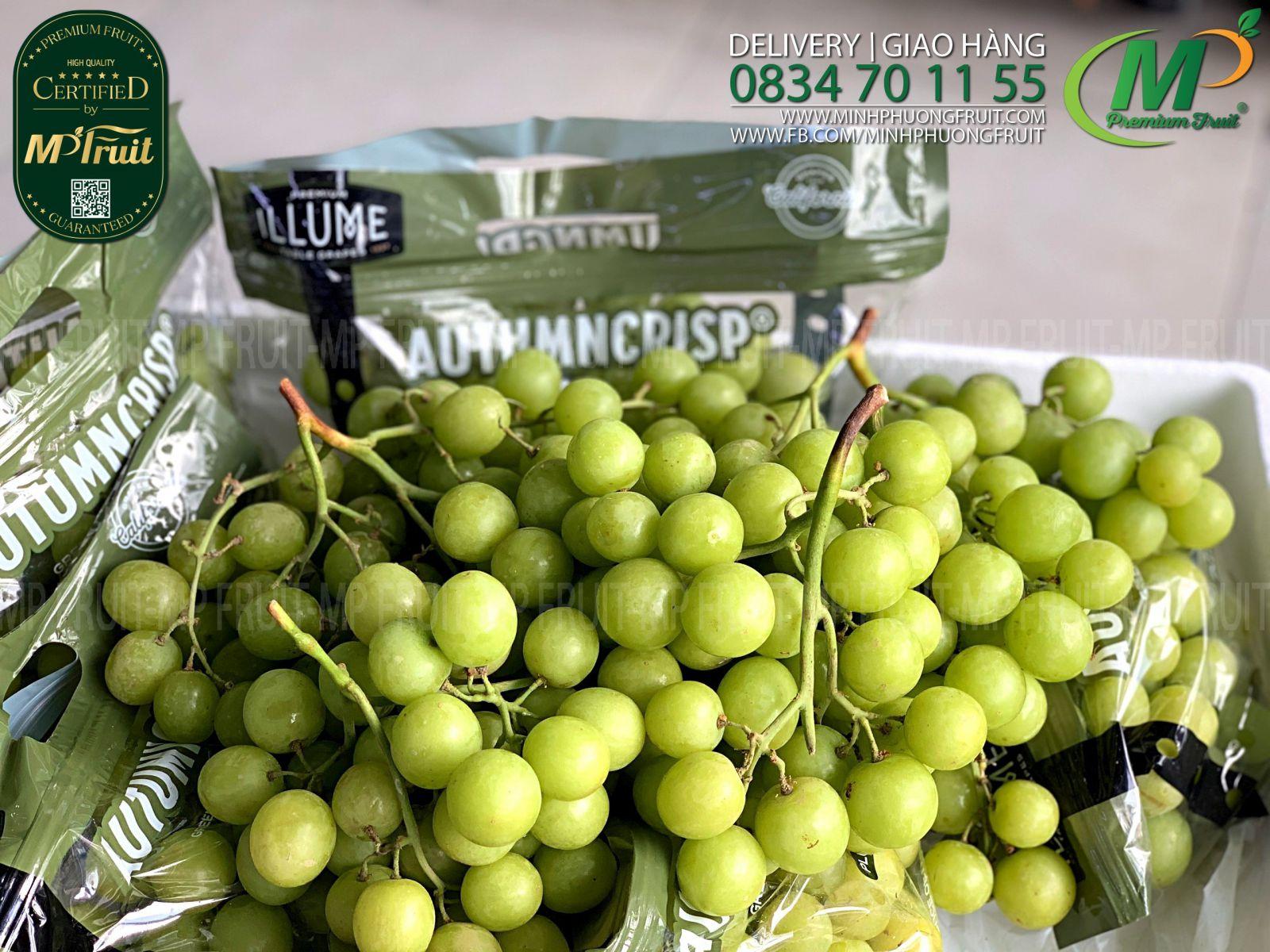 Nho Xanh Autumn Crisp iLLume Mỹ tại MP Fruits
