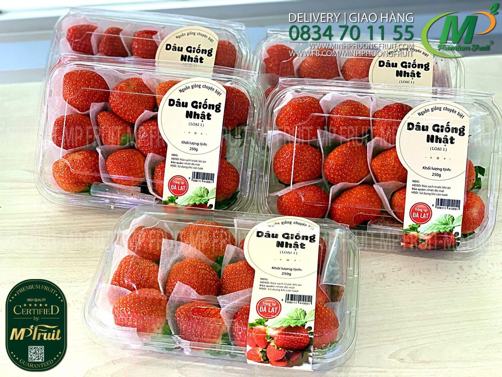 Dâu Tây Giống Nhật Bản Green Foods Dalat tại MP Fruits