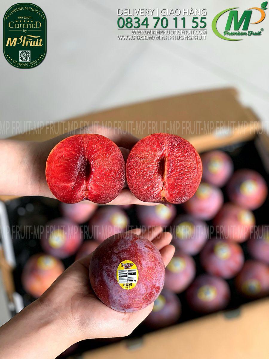 Mận Đỏ Family Tree Farms Mỹ tại MP Fruits