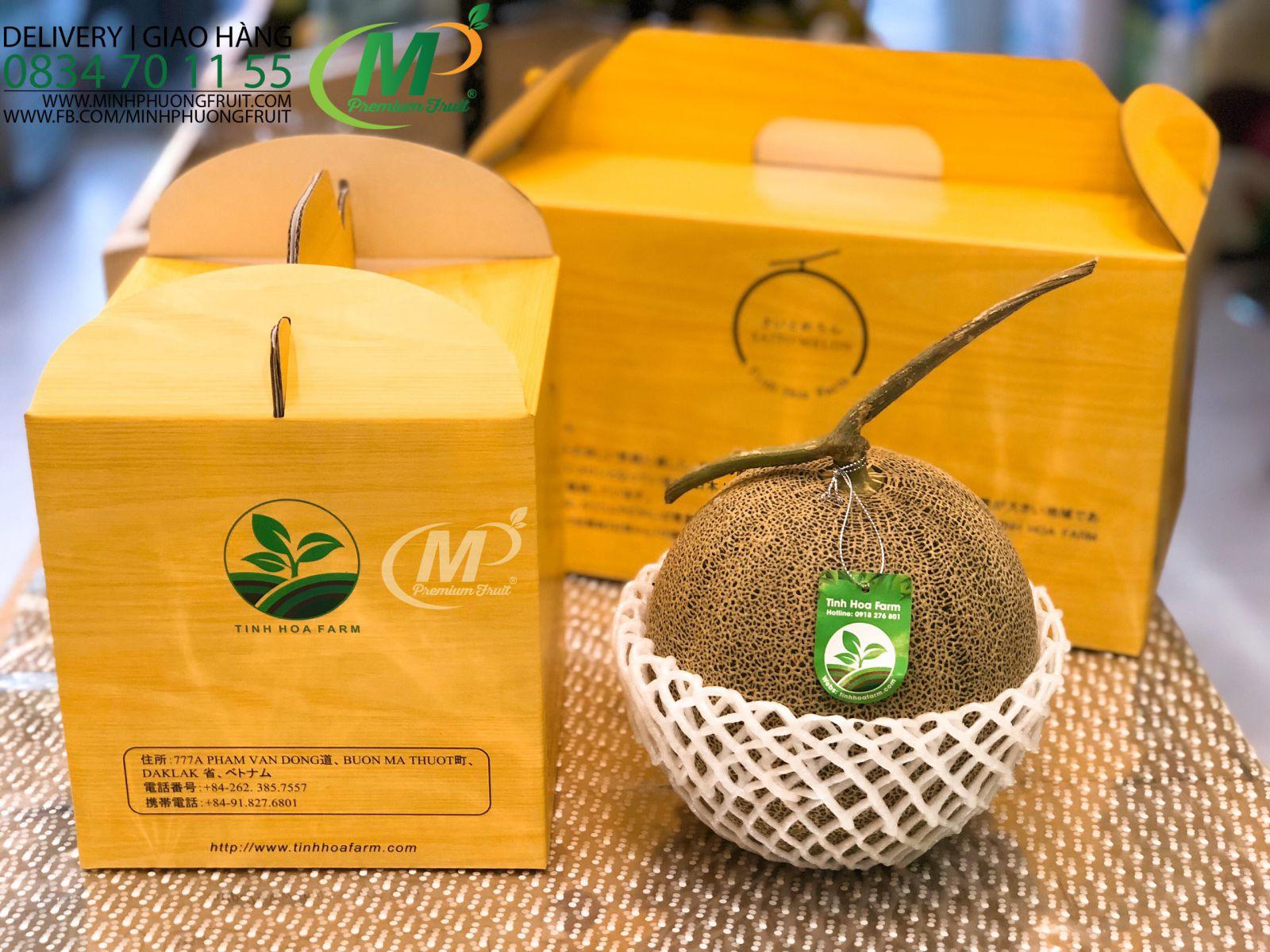 Dưa Lưới Nhật Saito Blue Melon - MP Fruit