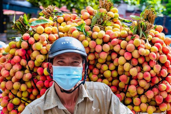 Nông Dân Bắc Giang Cùng Mùa Vụ Vải Thiều Năm 2021