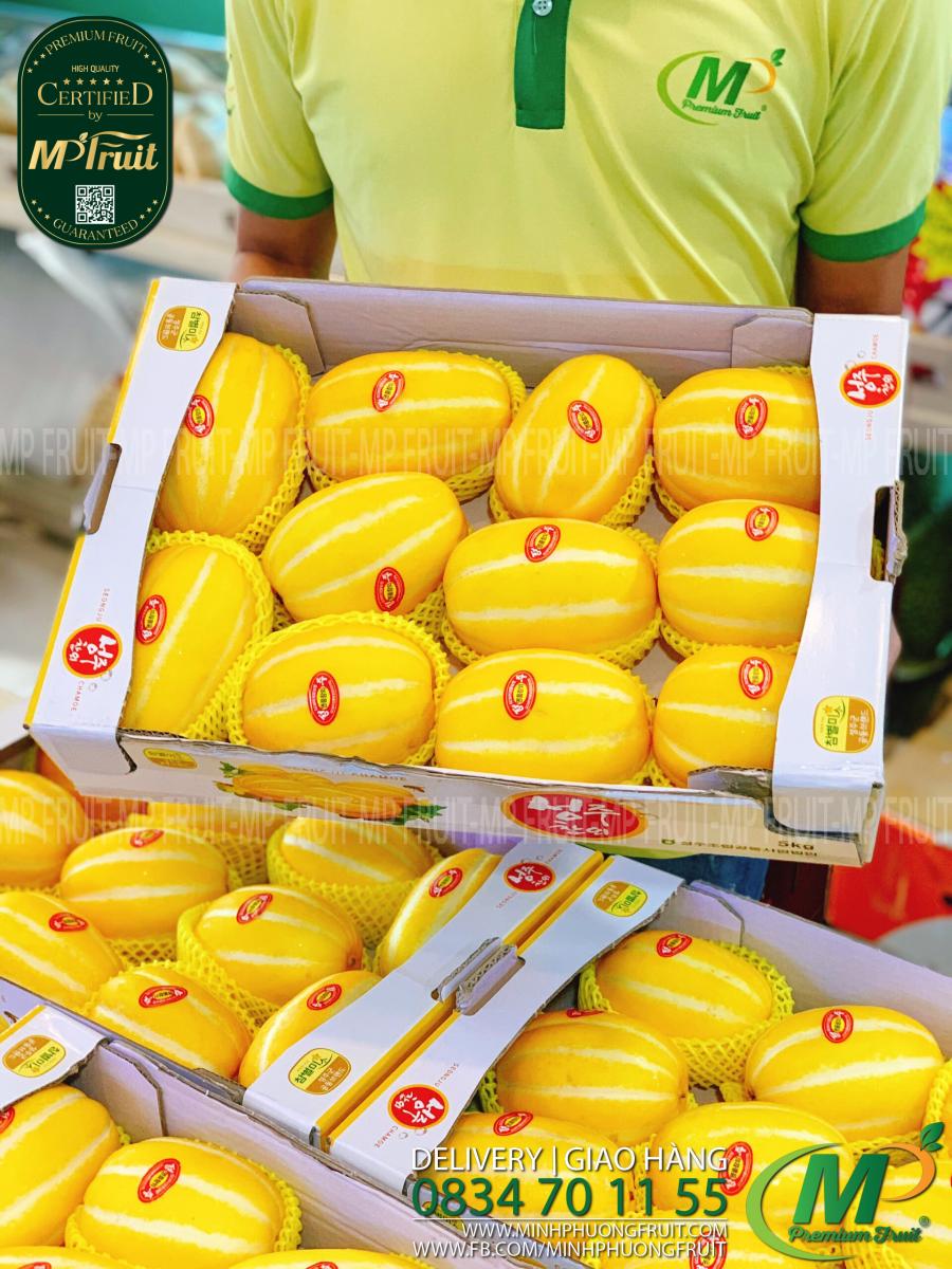 Dưa Lê Vàng Hàn Quốc tại MP Fruits