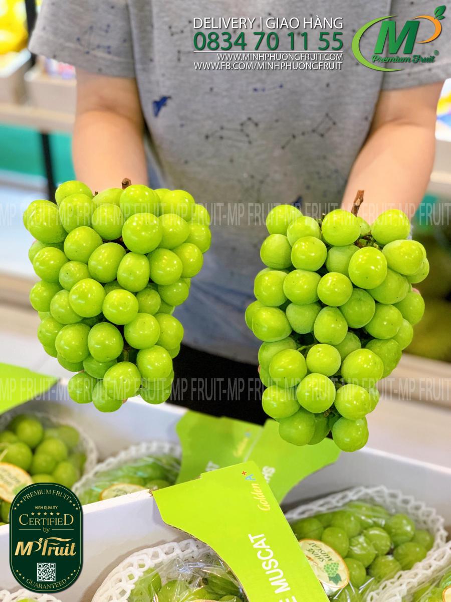 Nho Mẫu Đơn Shine Muscat Golden A+ Hàn Quốc tại MP Fruits