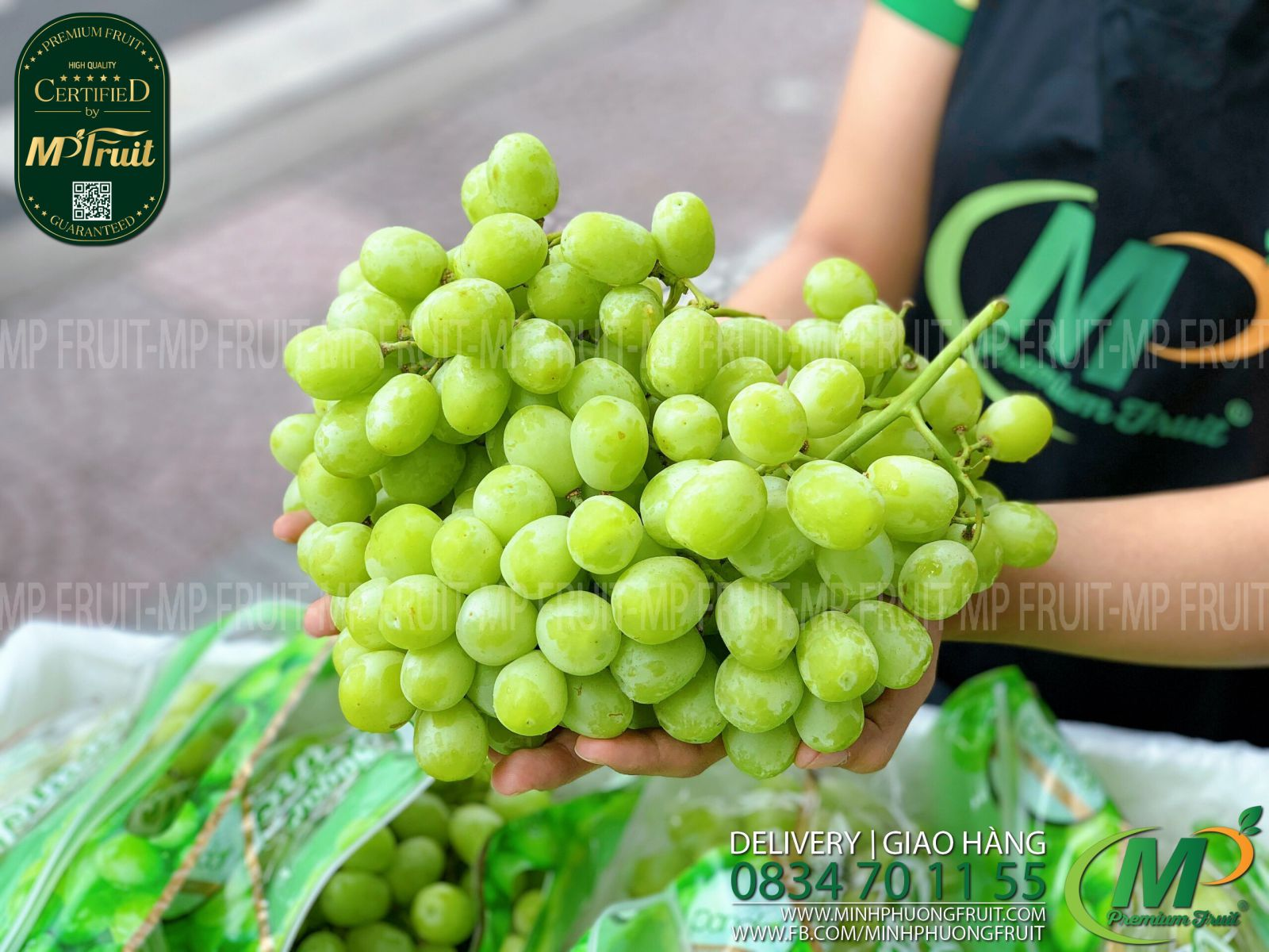 Nho Xanh Sugar Crunch Pandol Mỹ tại MP Fruits