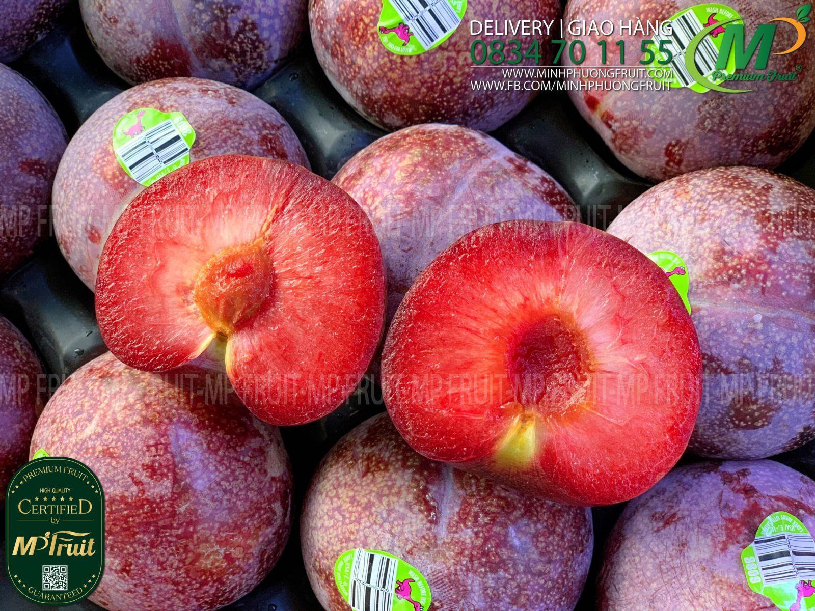 Mận Khủng Long Đỏ Mỹ tại MP Fruits