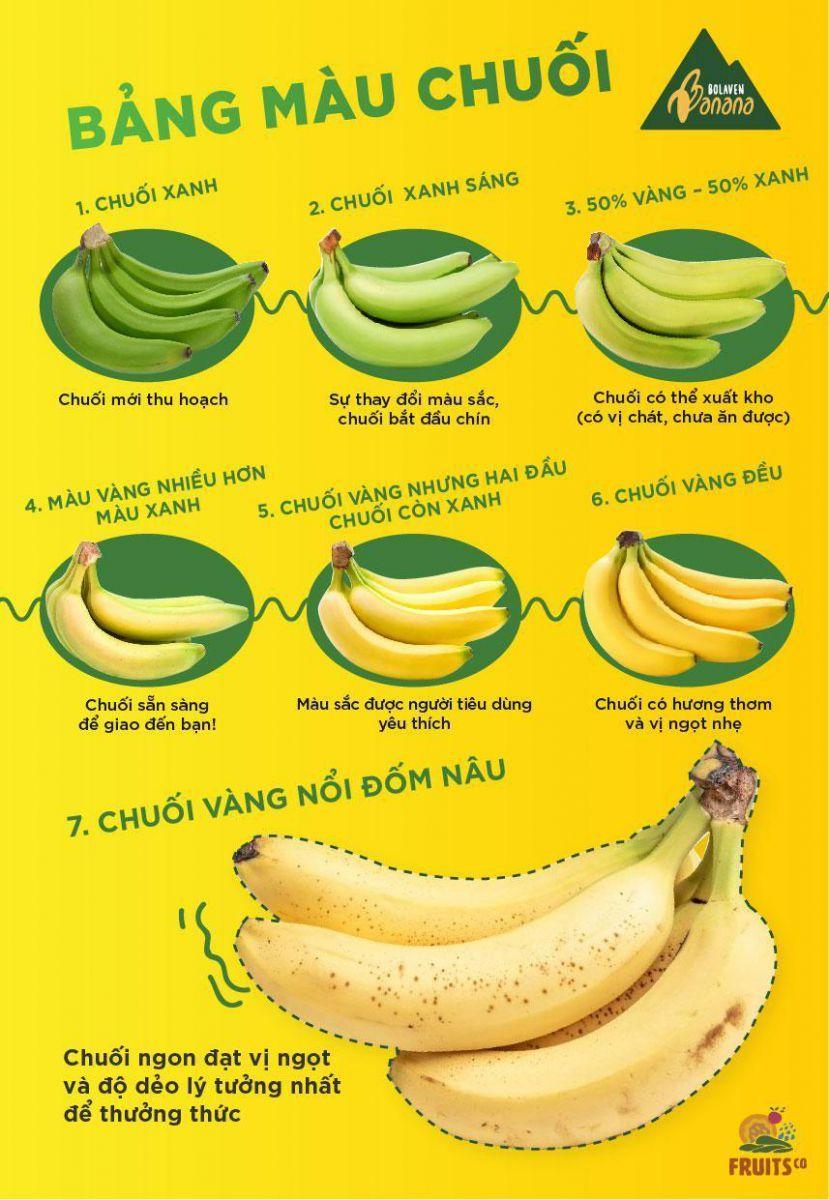 Bảng Màu Chuối Cao Nguyên Bolaven - MP Frutis