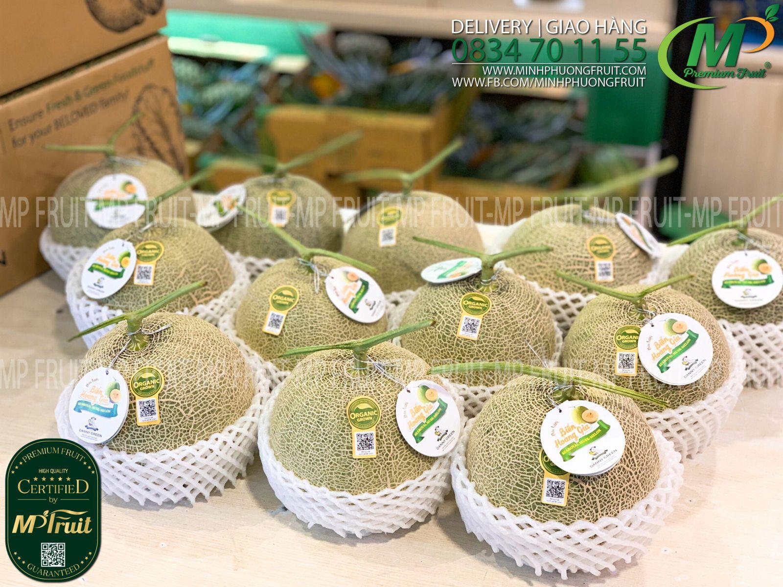 Dưa Lưới Nhật Taki Biển Hoàng Gia Organic - SeaRoyal Musk Melon Danny Green tại MP Fruits