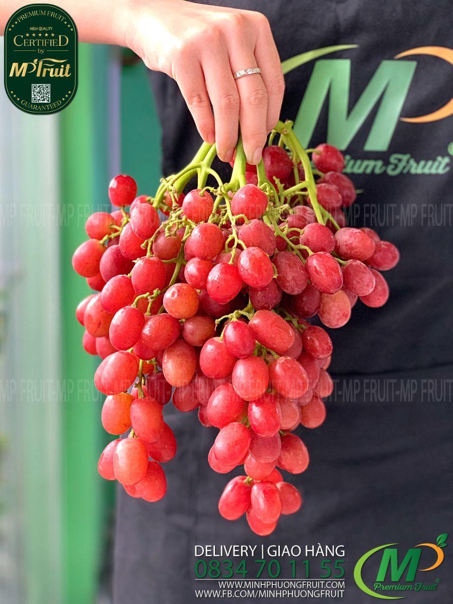Nho Đỏ Sweet Scarlet Mỹ tại MP Fruits