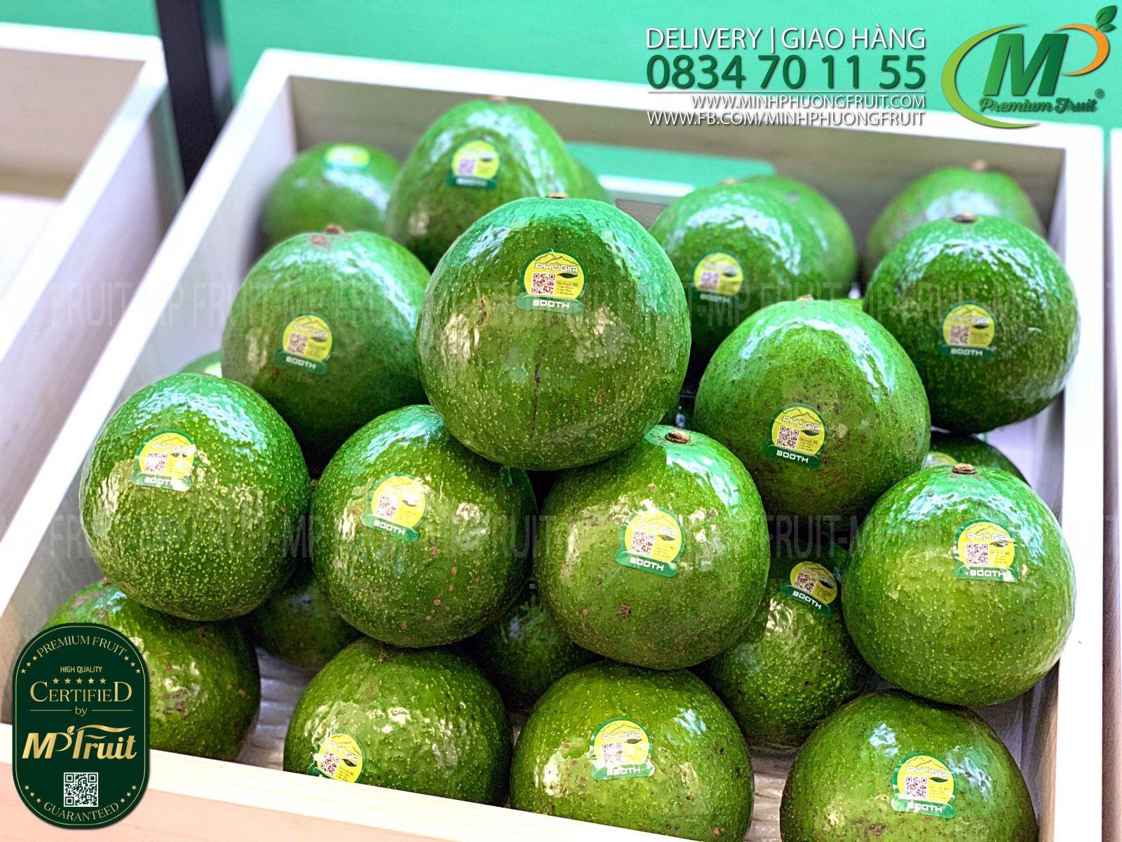 Bơ Booth 7 Di Linh Phú Gia Farm tại cửa hàng MP Fruit