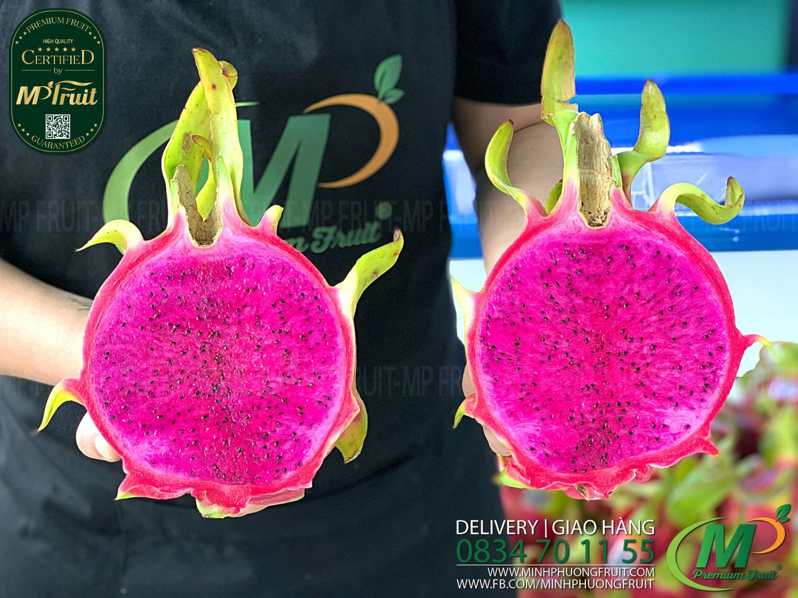 Thanh Long Hồng Pink TaYa tại MP Fruits
