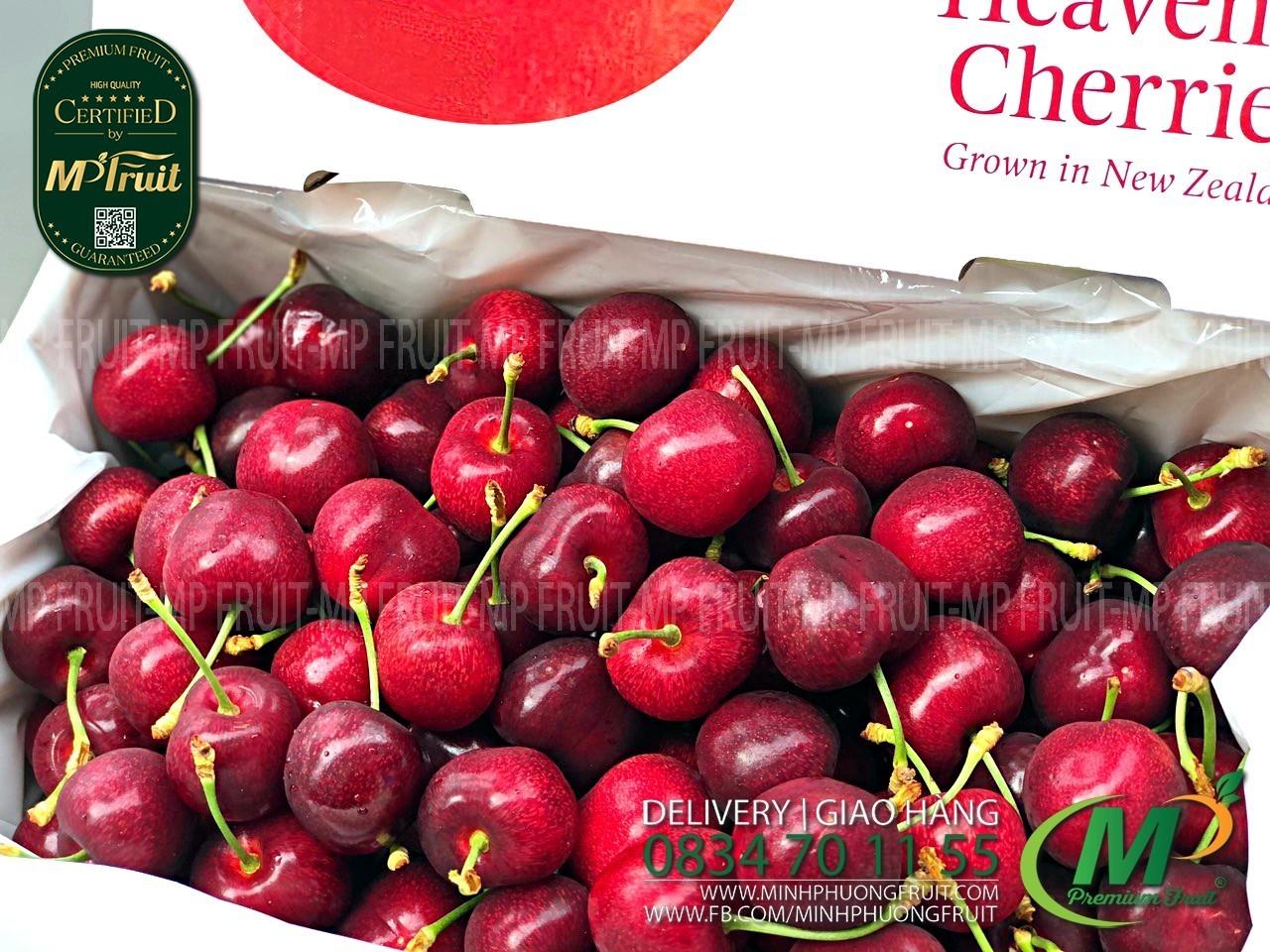 Cherry Đỏ Lani New Zealand Size 28+ tại MP Fruits