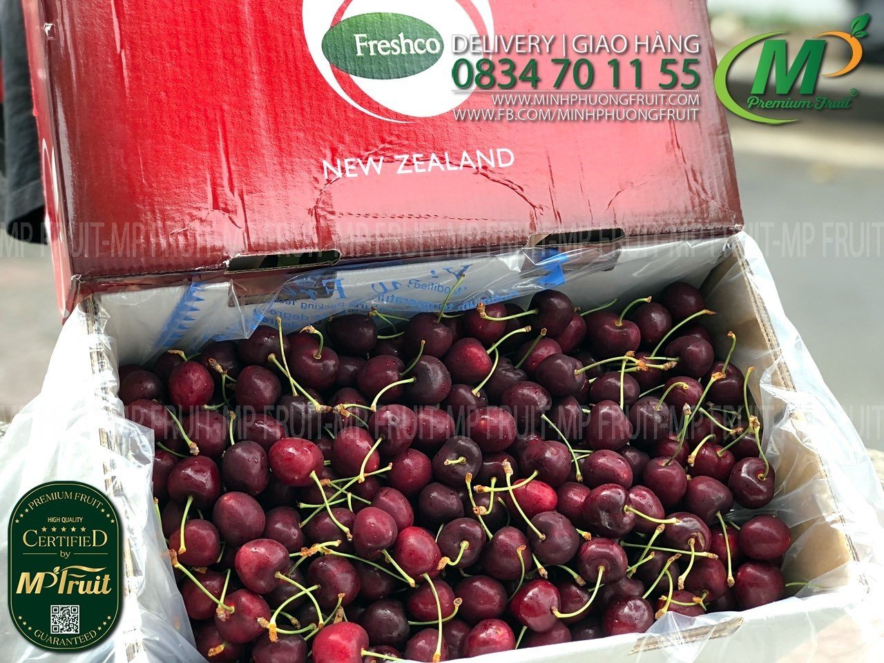 Cherry Đỏ New Zealand Size 28+ Freshco tại MP Fruits