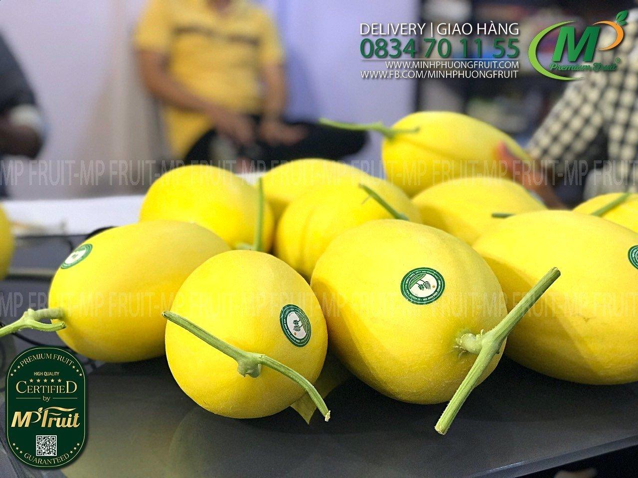 Dưa Lưới Giống Mỹ Huỳnh Long Fara Farm tại MP Fruit