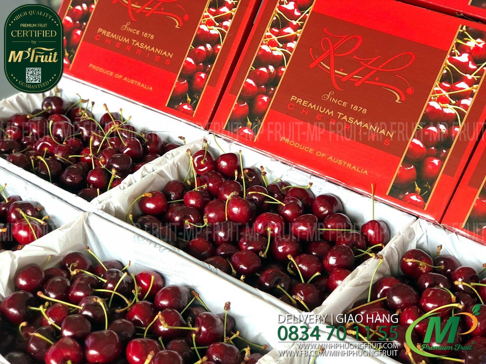 Cherry Đỏ Tasmania Size 32-34 RH Since 1878 thương hiệu lâu năm của Úc tại MP Fruit