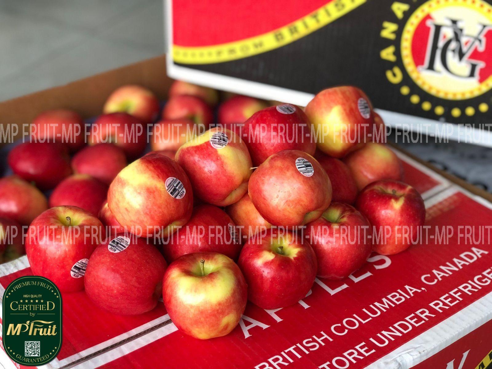 Táo Ambrosia Canada tại MP Fruits