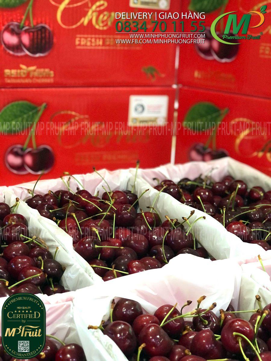 Cherry Úc Tasmania Premium tại MP Fruits