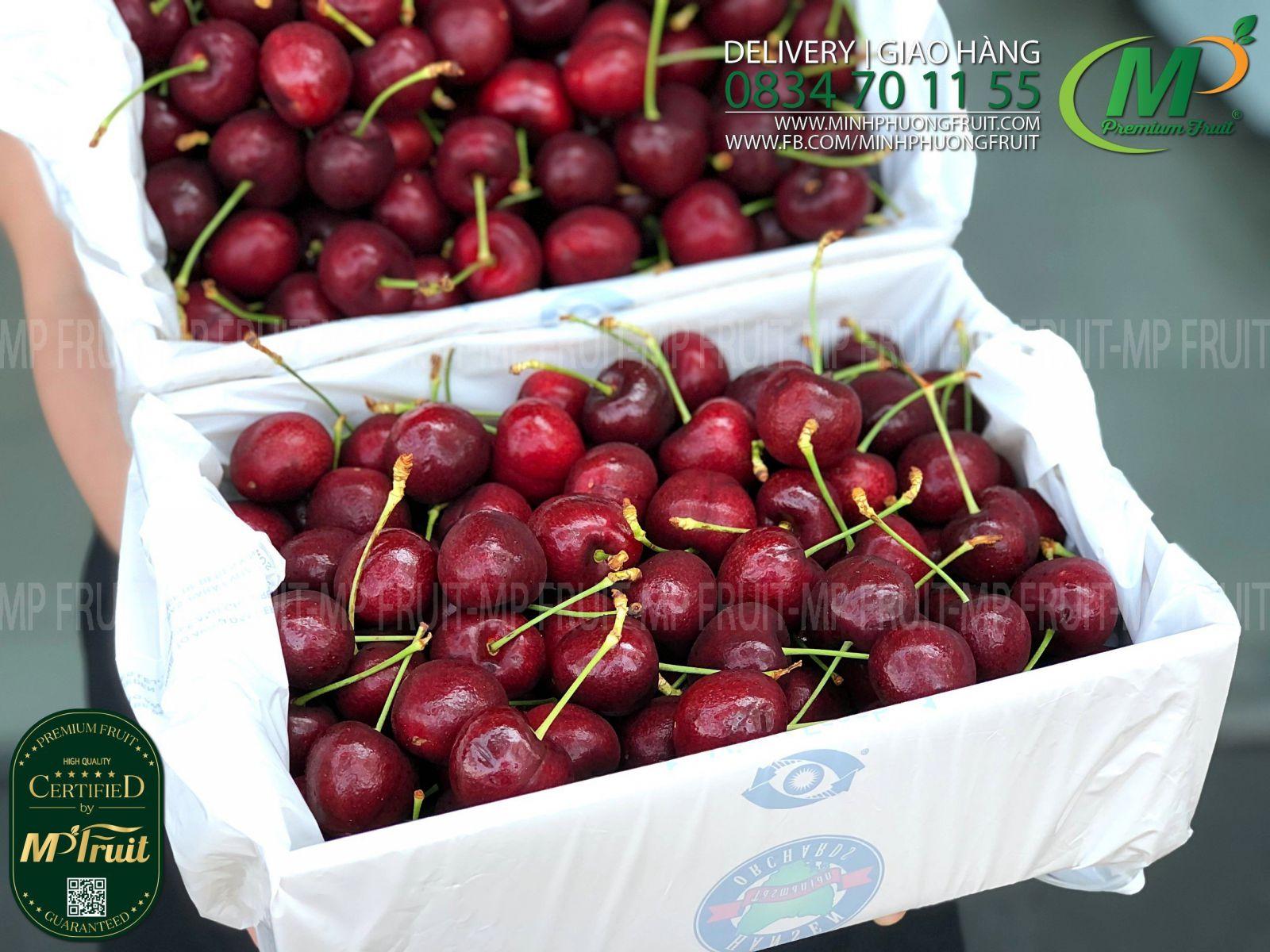 Cherry Đỏ Tasmania Size 32-34 | 43° South - Hộp 2kg thương hiệu uy tín của Úc tại MP Fruit