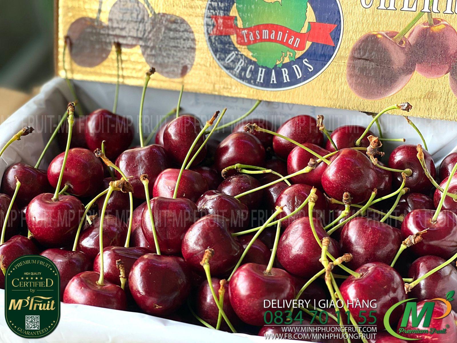 Cherry Đỏ Tasmania Size 30-32 | Hansen Orchards - Hộp 2kg thương hiệu lâu năm của Úc tại MP Fruit
