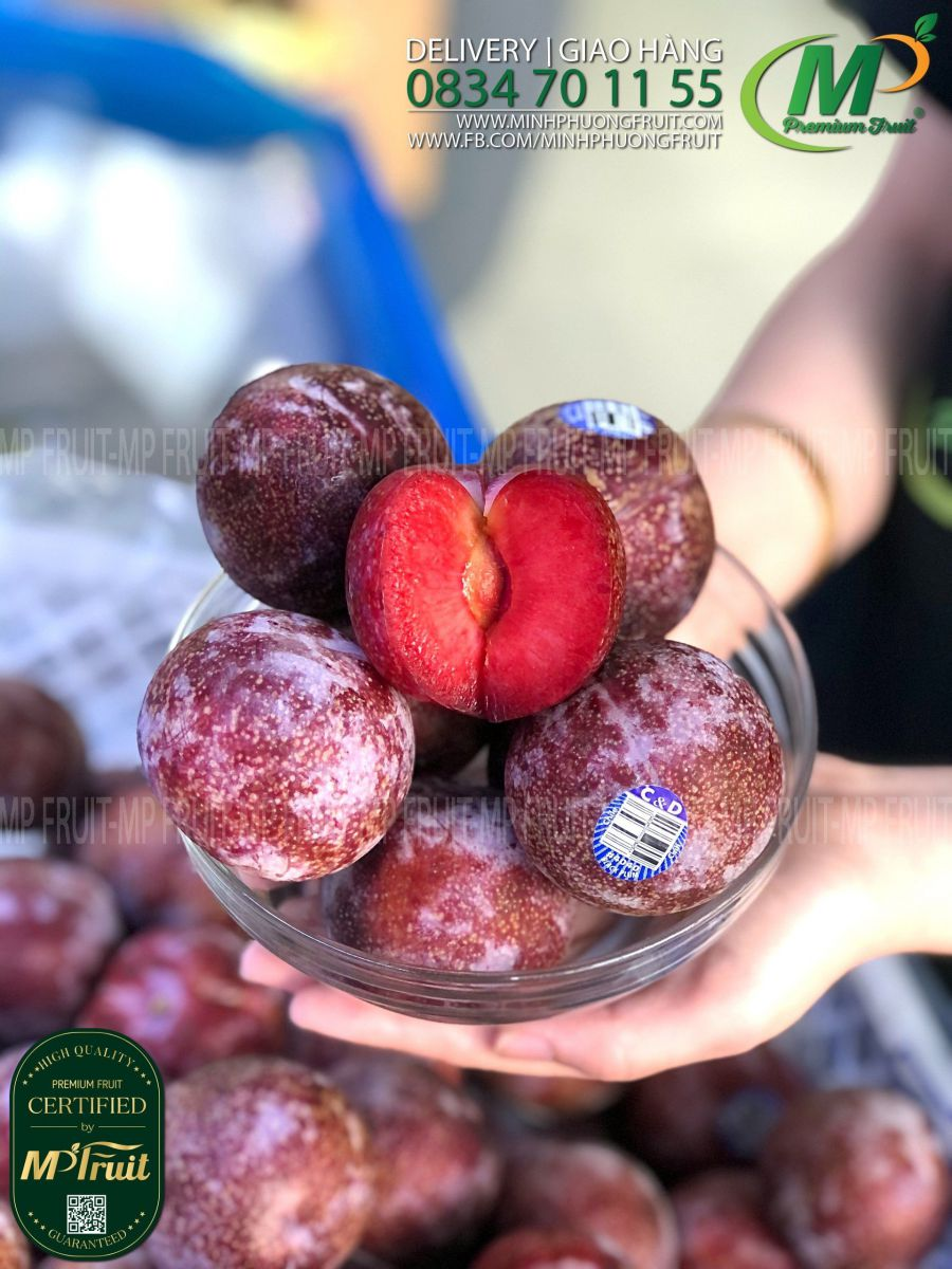 Mận Đỏ Ruột Đỏ Chile tại MP Fruit