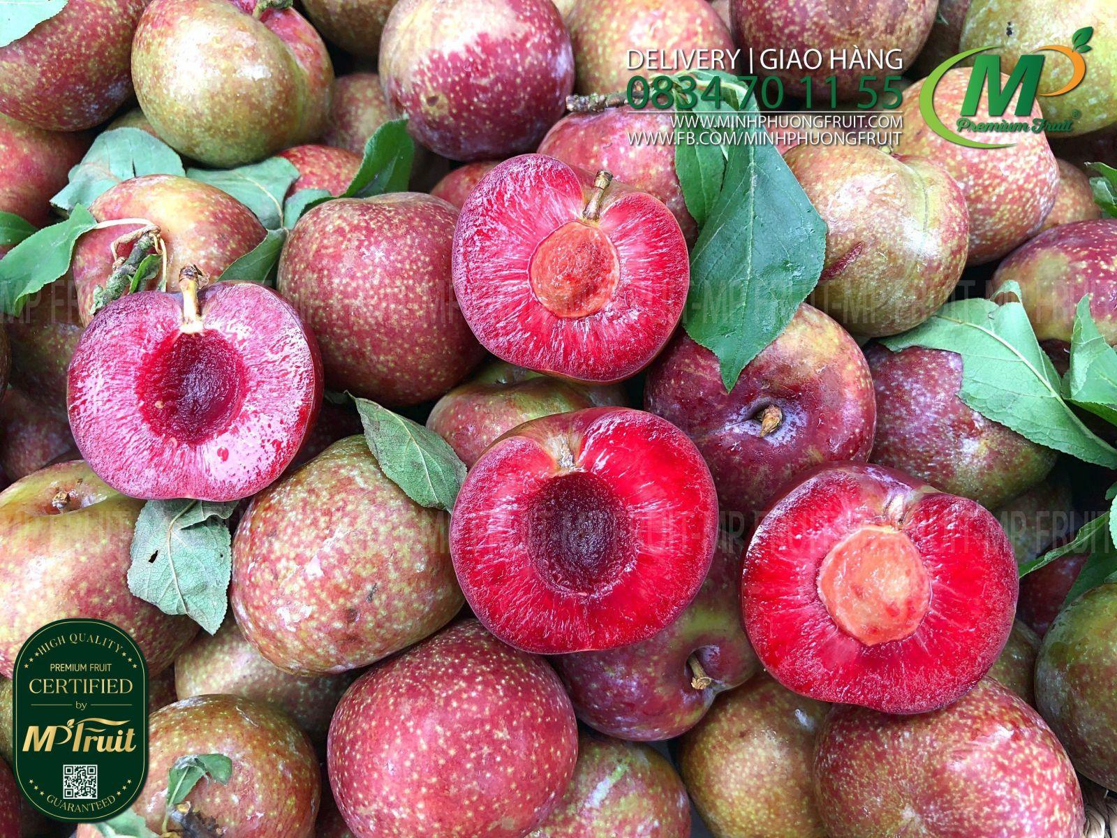 Mận Hậu Mộc Châu Size Vip tại MP Fruit