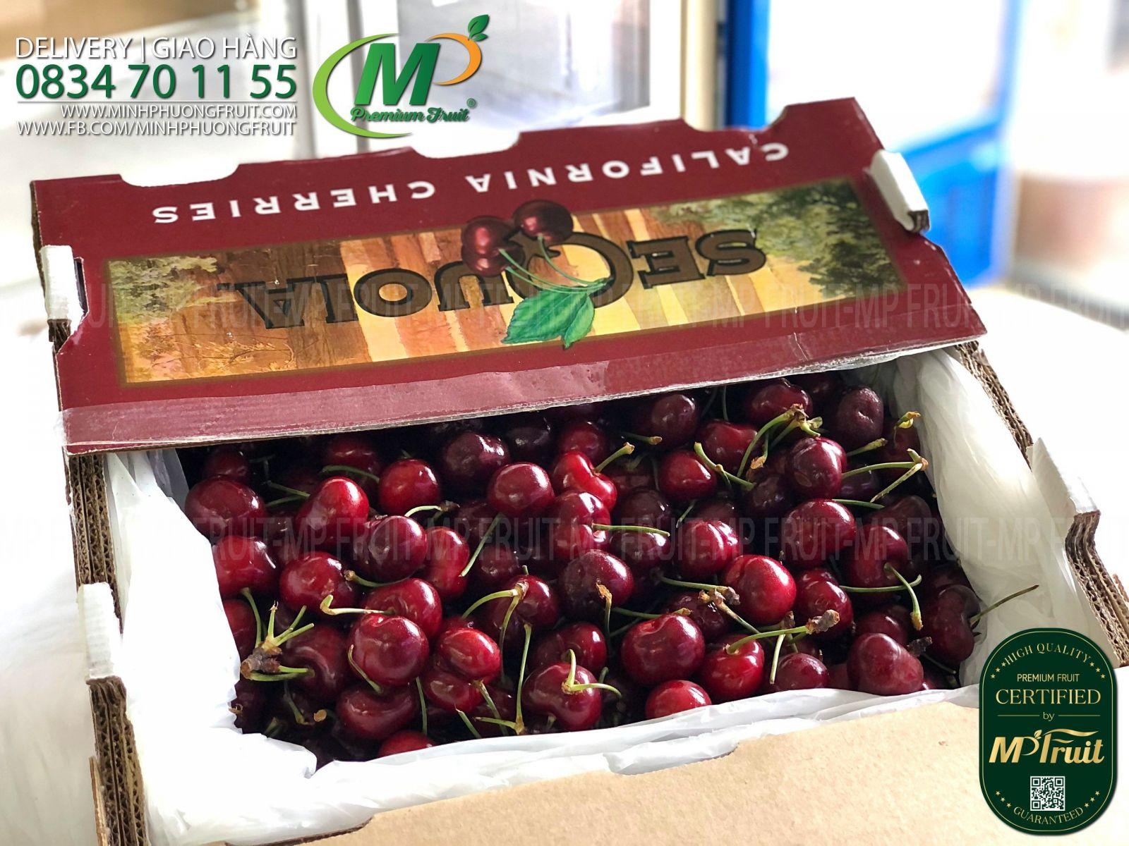 Cherry Đỏ Mỹ Size 9 | Sequoia tại MP Fruits