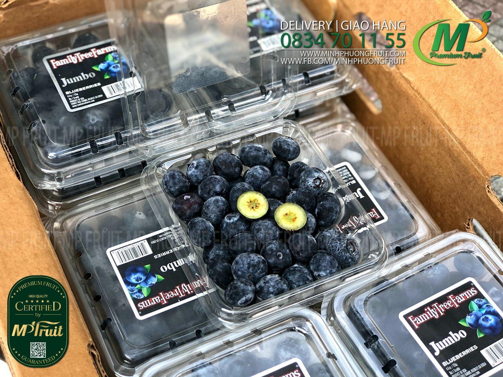 Việt Quất Mỹ   Family Tree Farm Jumbo tại MP Fruit
