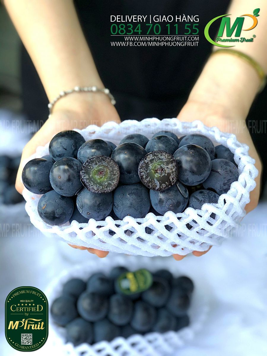 Nho Đen Thơm Rượu Black Pearl Giống Nhật Bản tại MP Fruit