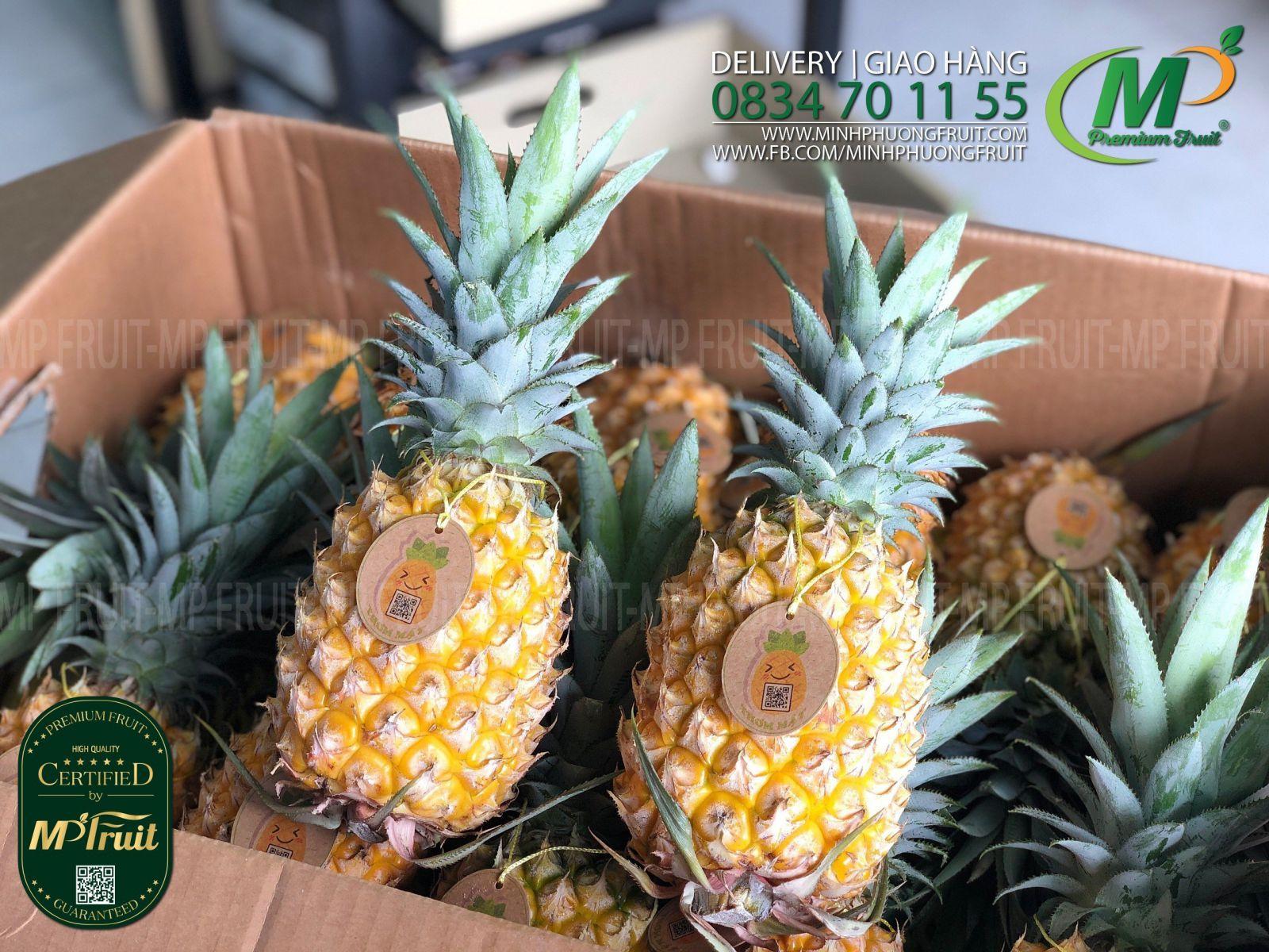 Quả Thơm Mật Quỳnh Lưu Nghệ An tại MP Fruit