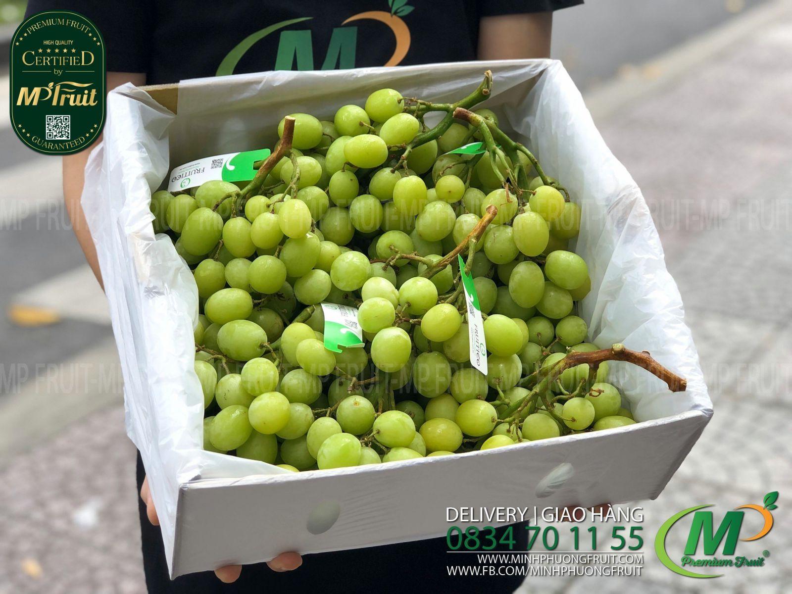 Nho Xanh Autumn Crisp Úc Thùng Xá   Fruitico tại MP Fruit