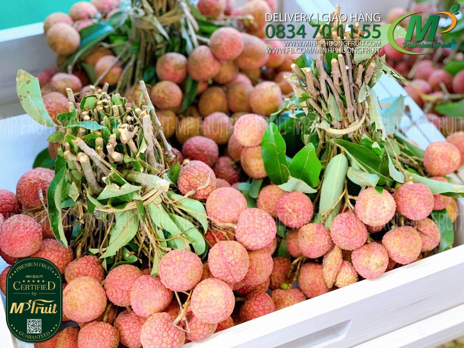 Vải Thiều Chuẩn Xuất Khẩu Nhật Bản Tại MP Fruit