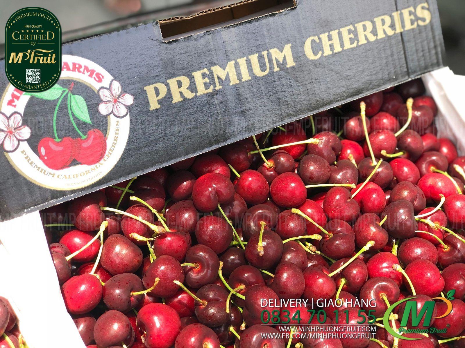 Cherry Đỏ Mỹ Size 8.5   Meena tại MP Fruits