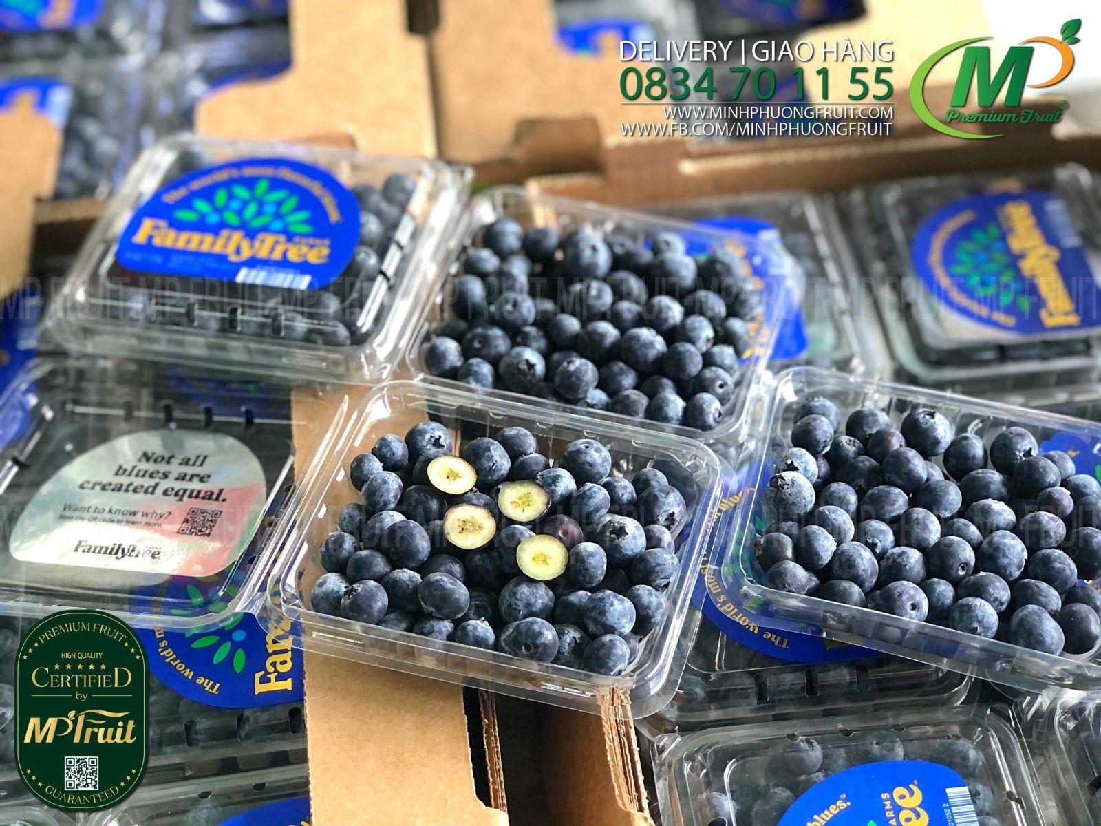 Việt Quất Mỹ   Family Tree Farm tại MP Fruit